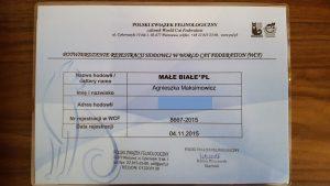 Rejestracja PZF Małe Białe