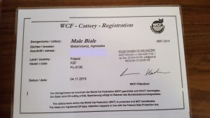 Rejestracja WCF Małe Białe